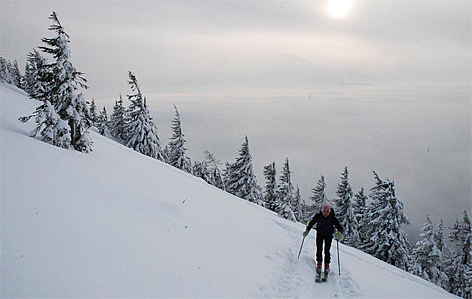 Skitour Skitourengehen Skibergsteigen Tourengeher Skitouren Schlenken Schnee Winter Lawine Lawinengefahr