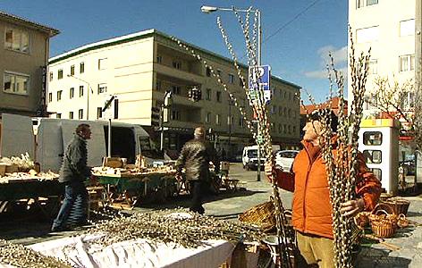 Julius Jezerniczky verkauft Palmkatzerl