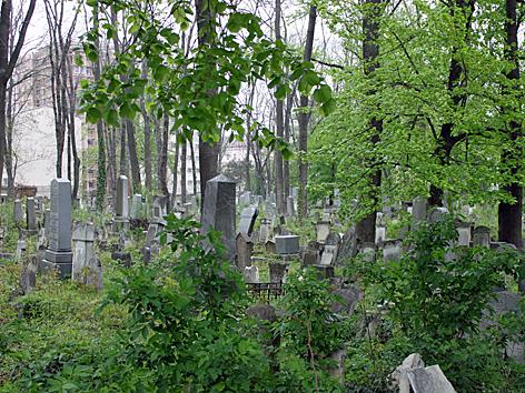 Jüdischer Friedhof in Währing