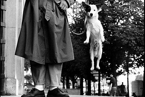 springender Hund, Paris, 1989