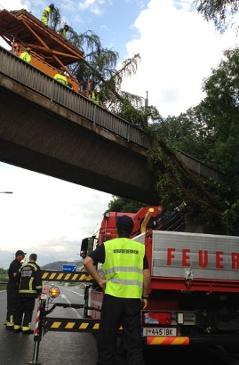 Umgestürzter Baum auf der A12 mit Einsatzkräften