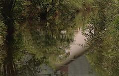 Haus spiegelt sich in Fluss
