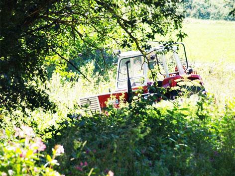 Forstunfall in Pöndorf