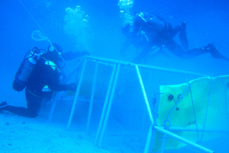 Feuerwehrtaucher unter Wasser