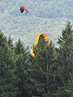 Paragleiter-Schirm hängt in einem Baum