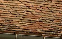 Detail eines Dachs
