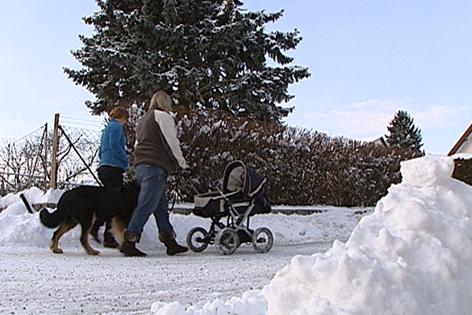 Spaziergang mit Hund und Kinderwagen