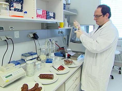 Gen-Analyse auf Pferdefleisch