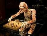 """Schach spielendes Plastinat in der """"Körperwelten""""-Ausstellung im NHM"""