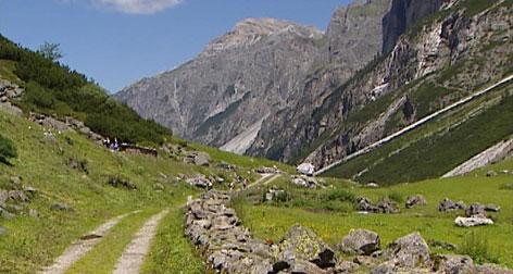 Almlandschaft in Bergtal