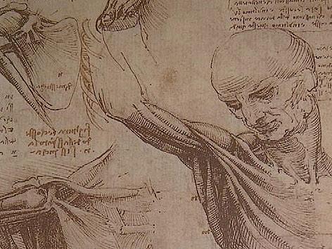 Leonardo da Vinci, das Genie\