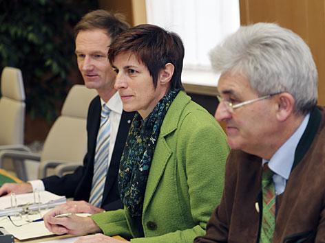 Rössler im U-Ausschuss Untersuchungsausschuss Grüne Politik