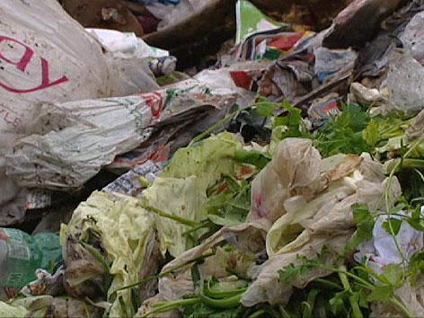Essen im Müll 2
