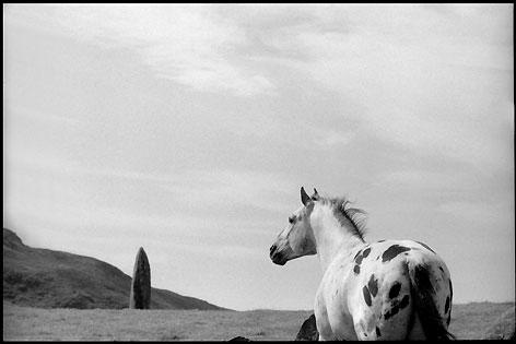 Hengst und stehender Stein, Schottland