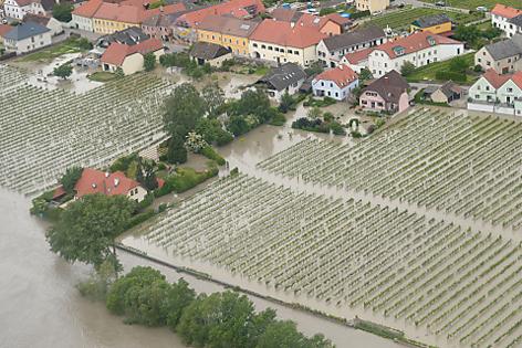 Weingärten der Wachau unter Wasser