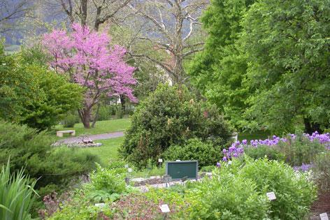 Parkanlagen des Botanischen Gartens