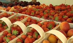Obststand, Straßenverkauf, Obst