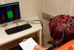 Schlaganfall, Gehirn, Forschung