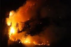 Waldbrand Thumsee Brand Feuer Waldfeuer