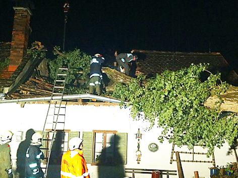 Baum, der auf ein Haus gestürzt ist