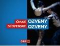 Signation, Logo Ozveny