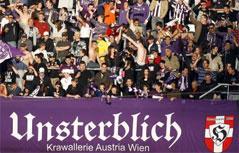 """Violetter Banner mit der Aufschrift """"Unsterblich"""""""