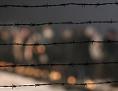 Gedenkfeier anlässlich des 65. Jahrestages der Befreiung des KZ Auschwitz-Birkenau, 27. Jänner 2010