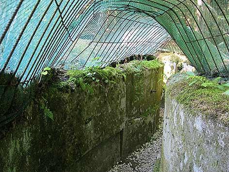 Bunkermuseum Wurzenpass