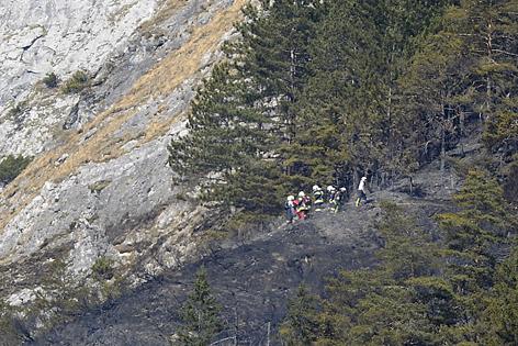 Feuerwehrmänner im Wald
