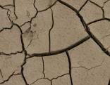 Dürre: rissige Erde