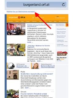 Screenshot burgenland.ORF.at
