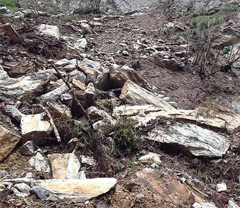 Felssturz und Mure beim Wanderweg zum Tappenkarsee