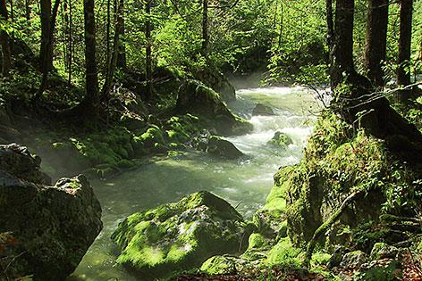 Das Bluntautal bei Golling (Tennengau)