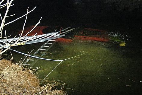 Ferrari Fischteich Wernberg