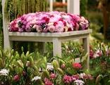 Blumen auf Sessel, Sujet