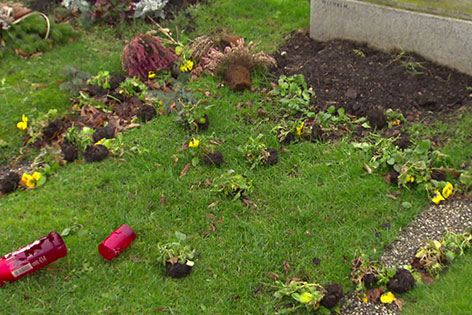 Krähe auf einem Grab