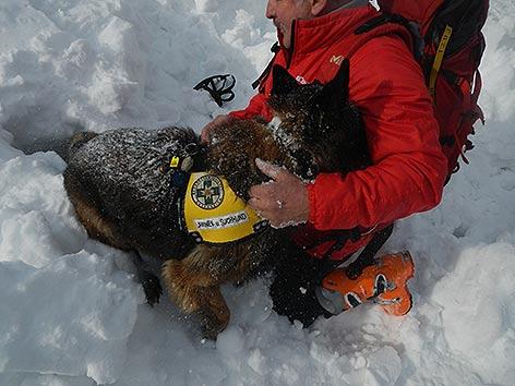 Lawinenhunde Training Innerkrems