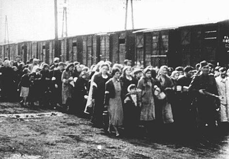 Deportation ins KZ