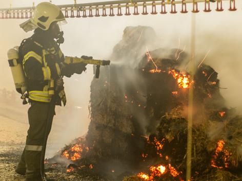 Feuer in Hühnermastbetrieb