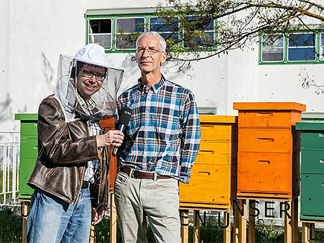 Die Bienenstöcke im Grazer ORF-Park