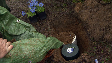 Naturbestattung in Werfenweng. Urnen im Grab in der Natur