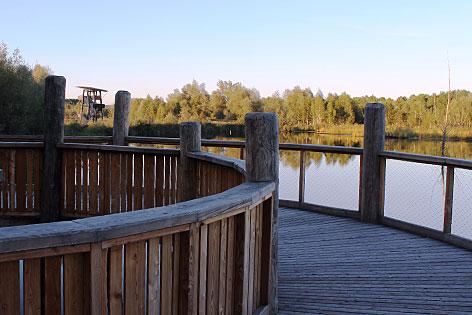 Besucherweg im Vogelschutzgebiet Weidmoos bei Lamprechtshausen