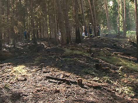 Waldbrand Mölbling gelöscht