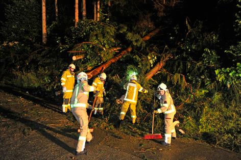Feuerwehr entfernt umgstürzte Bäume