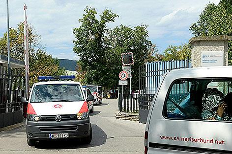 Die rund 50 minderjährigen Mädchen wurden nach Wien gebracht