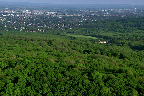Ö-Bild Wienerwald