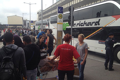 Busse am Westbahnhof