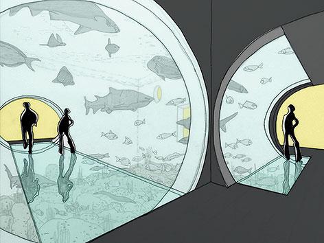 Spatenstich für Meerwasseraquarium