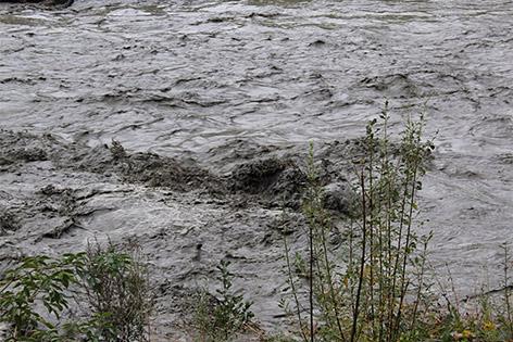 Möll Umweltkatastrophe Fische Spülung Kraftwerk Rottau