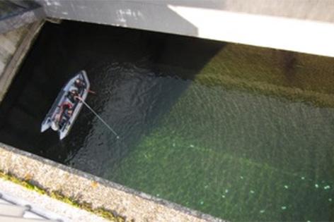 Tausende Euro auf dem Grund der Neuen Donau gefunden